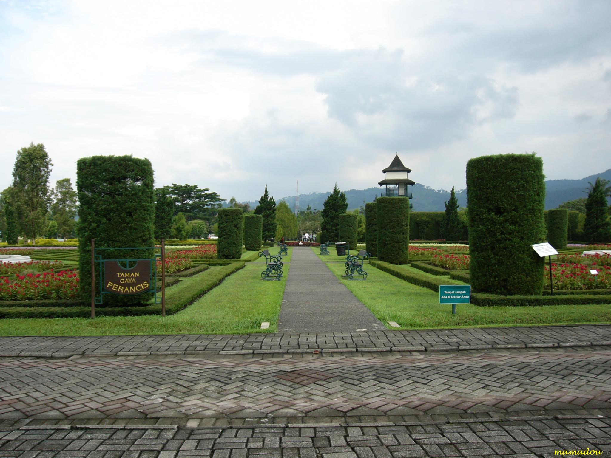 Taman Bunga Nusantara (Flower Garden), Cipanas - West Java